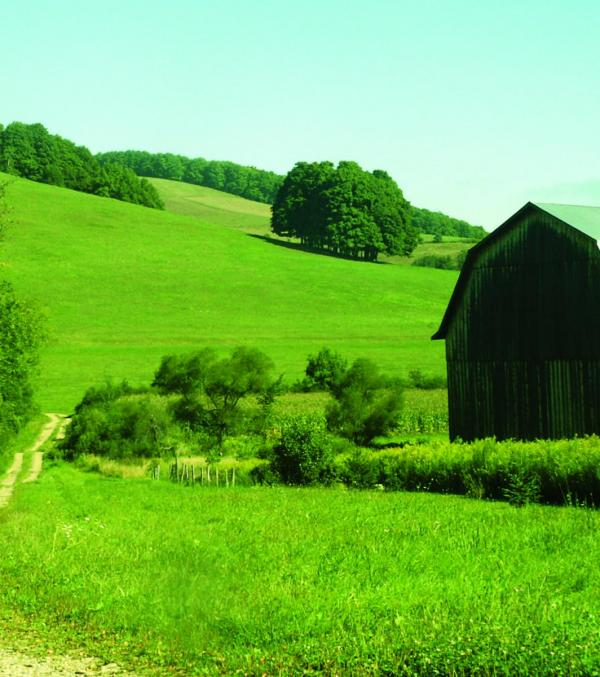 Farm with Pastured hills in Cattaraugus County